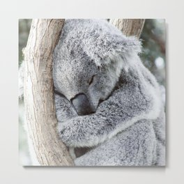 Sleeping Koala Metal Print
