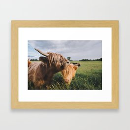 Highland Cows II Framed Art Print