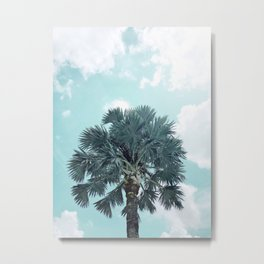 Teal Sky - Bismarck Palm Tree Metal Print