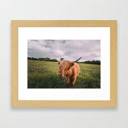 Epic Highland Cow Framed Art Print
