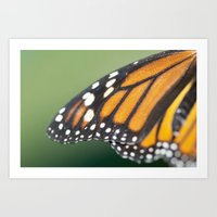On the Wings of a Butterfly Art Print