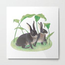 Black rabbits Metal Print