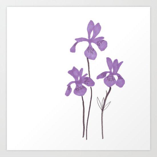 Iris Purple Flower Art Print