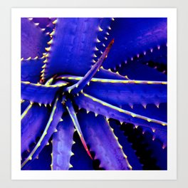 Spines of Nature II Art Print