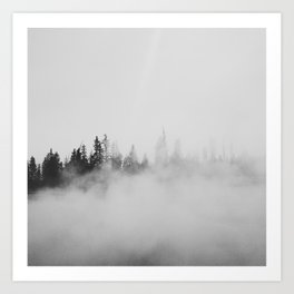 Morning Fog Art Print