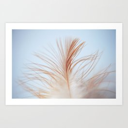 FEATHER cream look - animal colletion Art Print