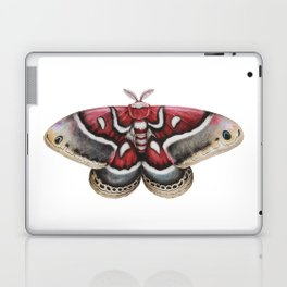 Moth - HYALOPHORA GLOVERI - Glover's silk moth | Painting | Watercolour | Insect Laptop & iPad Skin