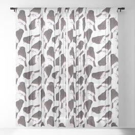 Black phoebe or Sayornis nigricans bird watercolor birds painting Sheer Curtain