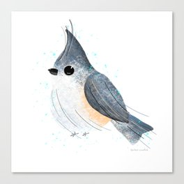 Tufted Titmouse Bird Illustration  Canvas Print