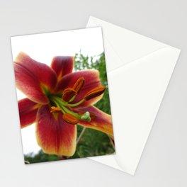 'Stargazer' Lily Stationery Cards