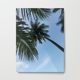 Tropical Sky Metal Print