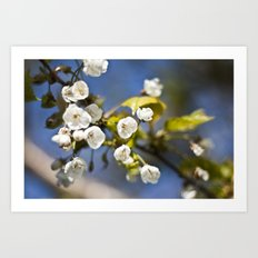 Spring is Near Art Print