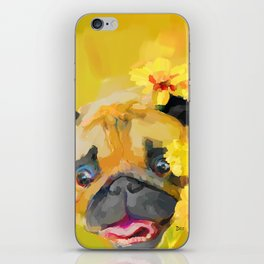 Pug in Daisies iPhone Skin