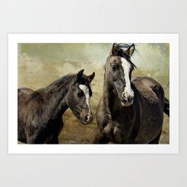 Feldspar and Ohanzee Art Print