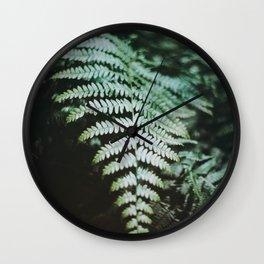Fern Leaf on 35mm Film. Analog Nature Photography. Schwarzwald, Germany. European Travel Print. Wall Art. Wall Clock