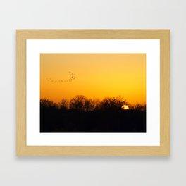 Sunset and cranes natural landscape from France Framed Art Print