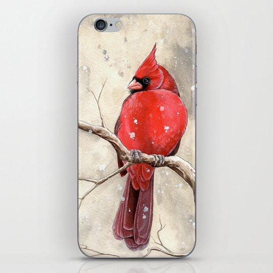 Northern Cardinal iPhone Skin