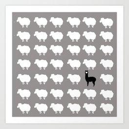 Don't be a sheep, Be a Llama Art Print