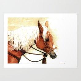 Primo Art Print
