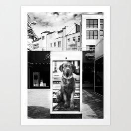 Urban City Dog Art Print