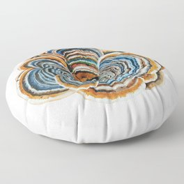 "Trametes ""Turkey Tail"" Mushroom Floor Pillow"