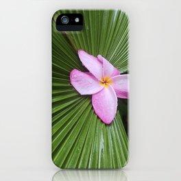 Pink Plumeria Flower iPhone Case