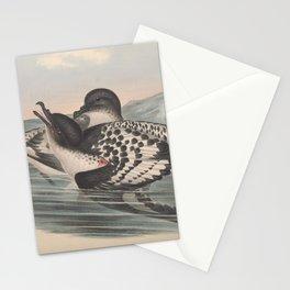 Cape Petrel daption capensis3 Stationery Cards