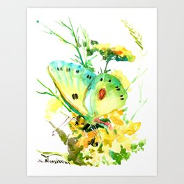 Butterfly, yellow turquoise floral butterfly home decor Art Print