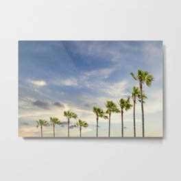 Palm trees in evening glow Metal Print