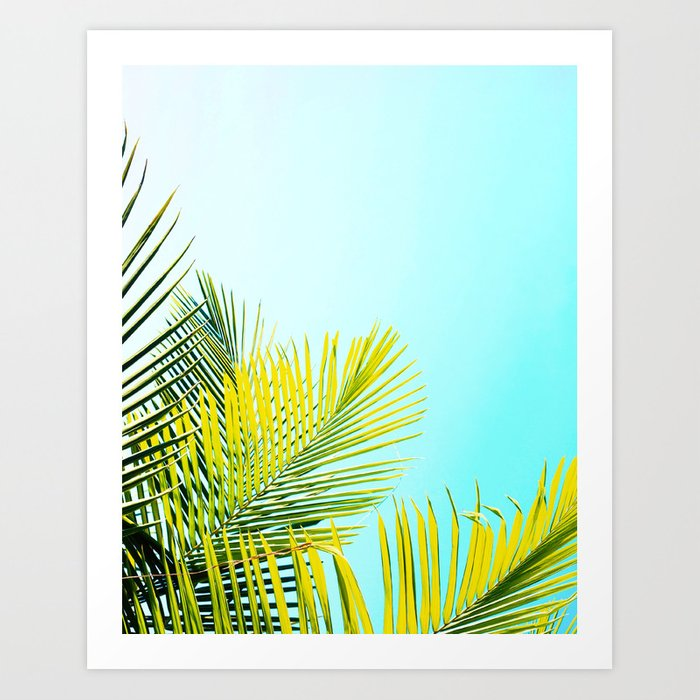 Palm Fronds Kunstdrucke