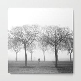Landscape stories_Plans Metal Print