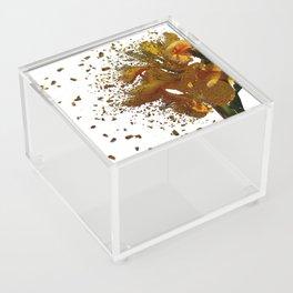 Iris Explosion Acrylic Box