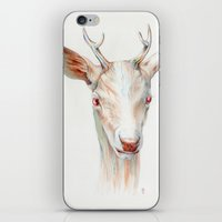 stag iPhone & iPod Skins featuring Stag by Brandon Keehner