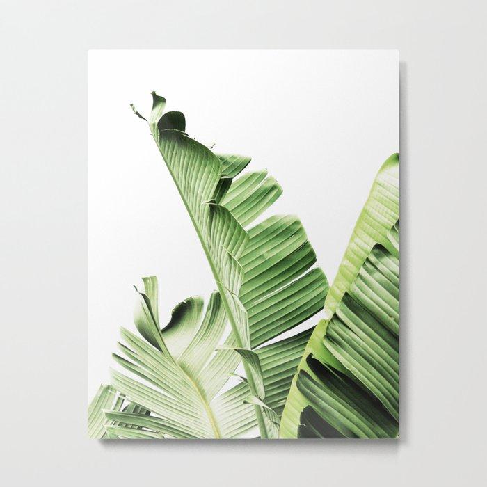 Banana Leaves Leaf Plant Modern Wall Art Tropical Metal Print