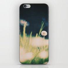 dandelion XV iPhone & iPod Skin