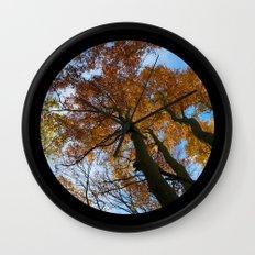 Tree from below Wall Clock