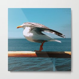 While Sailing Metal Print