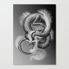 Scales of ortune Canvas Print