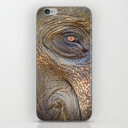 Close-up Elephant eye iPhone Skin