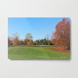 Fall Colorful  Public Park in Surrey, BC, Canada Metal Print