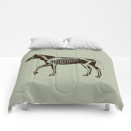 Extend your imagination 2 Comforters
