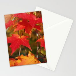 Fiery Autumn Maple Leaves 4966 Stationery Cards