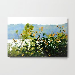 Naturally Clear Metal Print