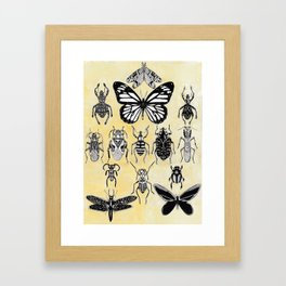 Inescts Framed Art Print