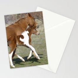 Frolic Stationery Cards