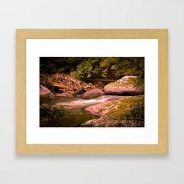 Silent Power Framed Art Print