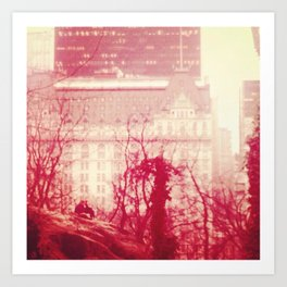 New York City - Central Park Art Print