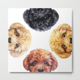 Toy poodle friends mix, Dog illustration original painting print Metal Print