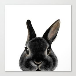 Netherland Dwarf rabbit Black, illustration original painting print Canvas Print