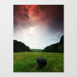 The Force Of Both Worlds  Canvas Print